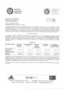 Sopte MLSZ hatrozat 2013-2014 001